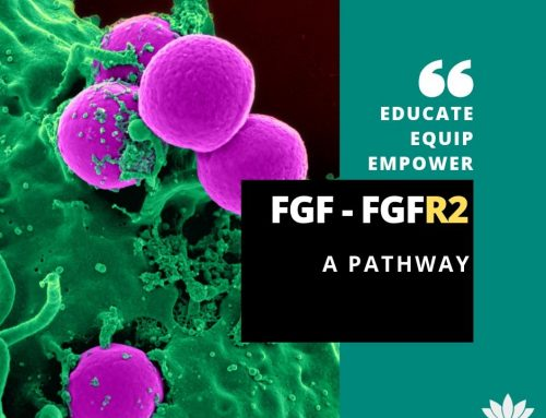 Cholangiocarcinoma and FGFR2