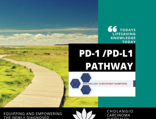 PD-1 / PD-L1 is the Checkpoint Pathway